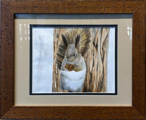 Aurae Beidler, Feisty Squirrel, Watercolor, $125