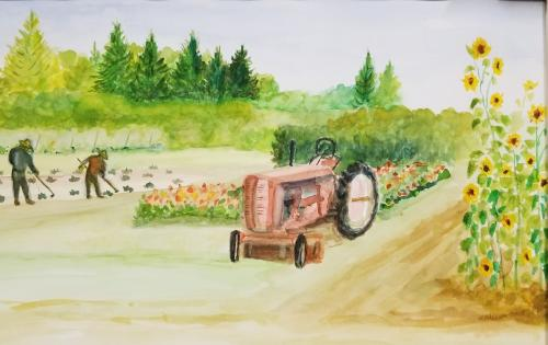 Farm Life by Barbara Anderson