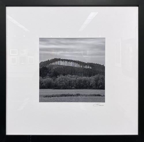 John Friedlander, Wall, Photography, $300