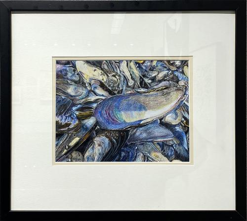 Kelly P. Collins, Mussel Beach, Colored Pencil, $750