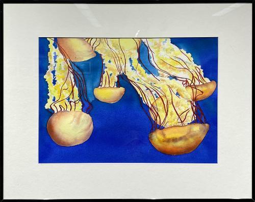 Linda J. Edwards, Pacific Sea Nettles Jellyfish, Watercolor, $395